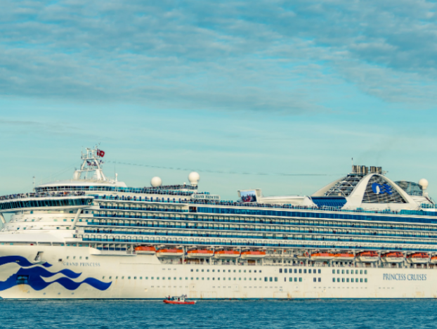 Photo of Coronavirus Survived 17 Days on Diamond Princess Cabin Surfaces